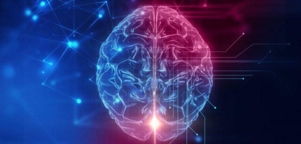 """یافته جدید:مرکز حافظه مغز در طی """"فراموشی ابتدایی دوران کودکی"""" فعال می ماند."""