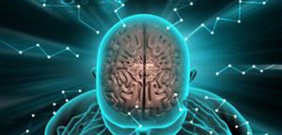 مغز ما چگونه فرآیند ترس را طی می کند؟