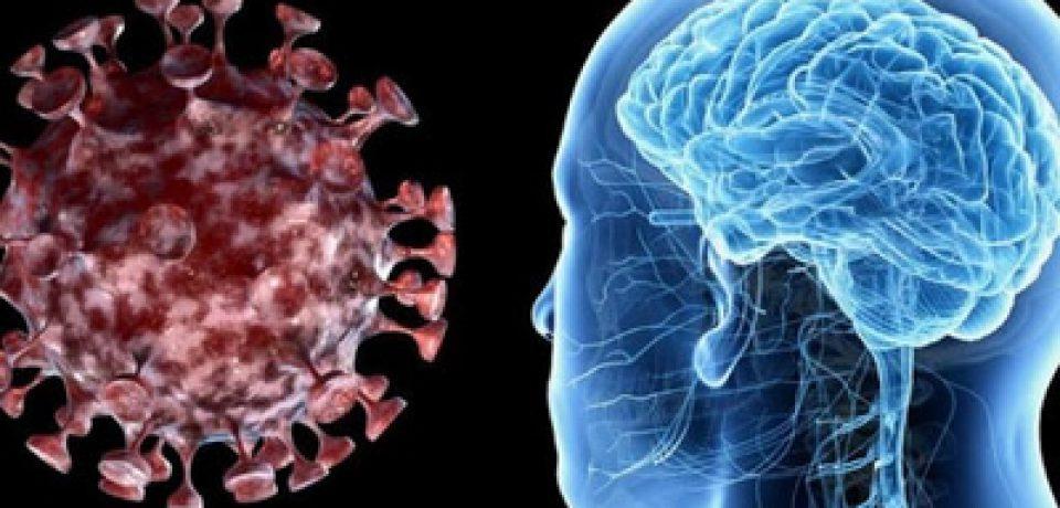 حضور کروناویروس در مناطق بحرانی مغز میتواند باعث هذیان شود.