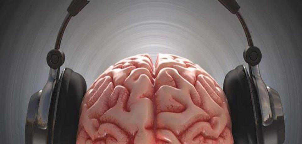 می دانید مغز چگونه به موسیقی پاسخ می دهد؟
