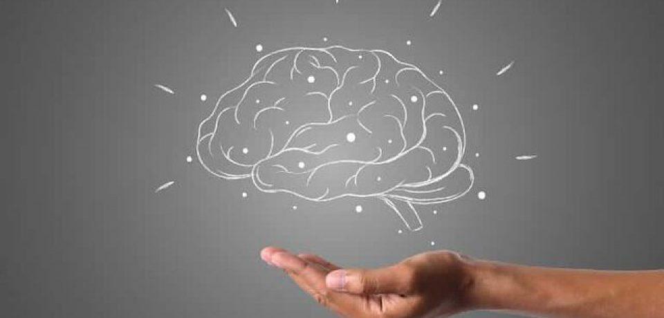 کشف جنبه جدیدی از نقش سلولهای ایمنی در محافظت از مغز در برابر آلزایمر